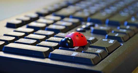 une coccinelle sur un clavier , ce qui représente l'image du bien-être au travail